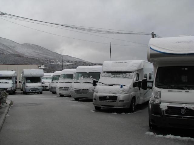 Ippocamper sotto la neve 1 febbraio 2012